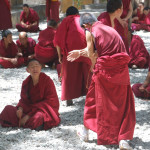 Terrific Tibet