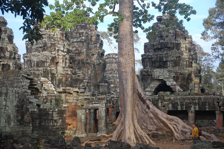 Cambodia - Angkor - Temples and Massive Tree