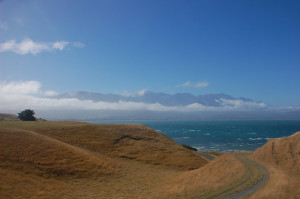 New Zealand - Kaikoura - Peninsula Track 02