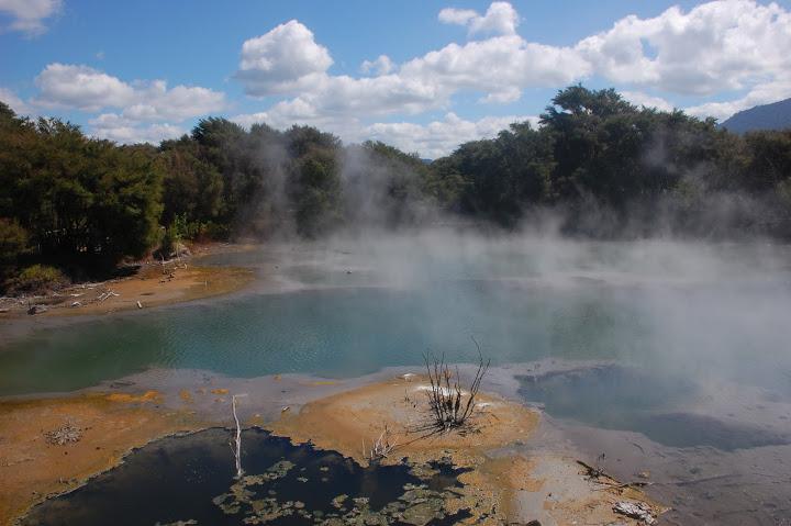 New Zealand - Rotorua - Kuirau Park