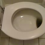 Dutch Toilet Design Ethos: Admire your work?