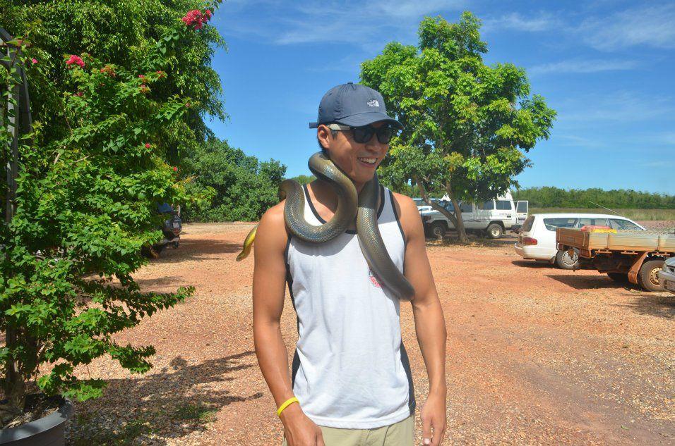 Australia - NT - Snake