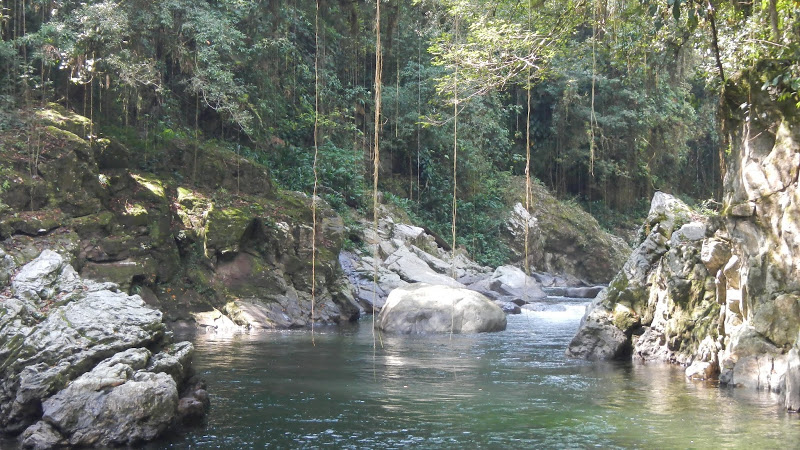 Colombia - Ciudad Perdida - Swimming Hole