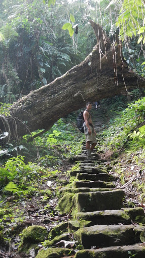 Colombia - Ciudad Perdida - Stone Stairs
