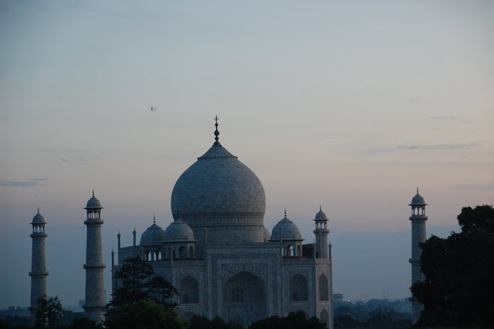 India - Agra - Taj Mahal 4