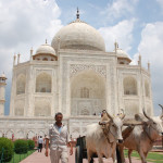 Thru the Lens: The Taj Mahal