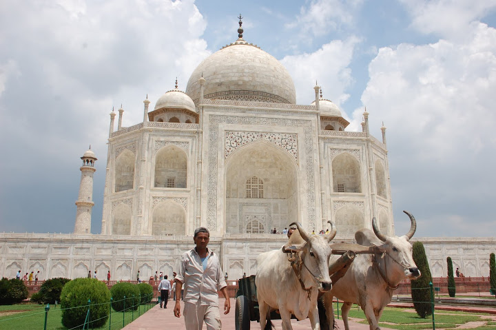 India - Agra - Taj Mahal 2