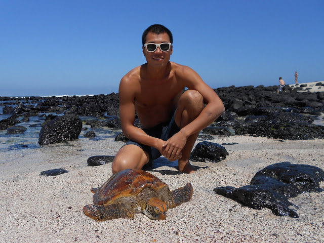 Ecuador - Galapagos - San Cristobal - Me with a small Sea Turtle
