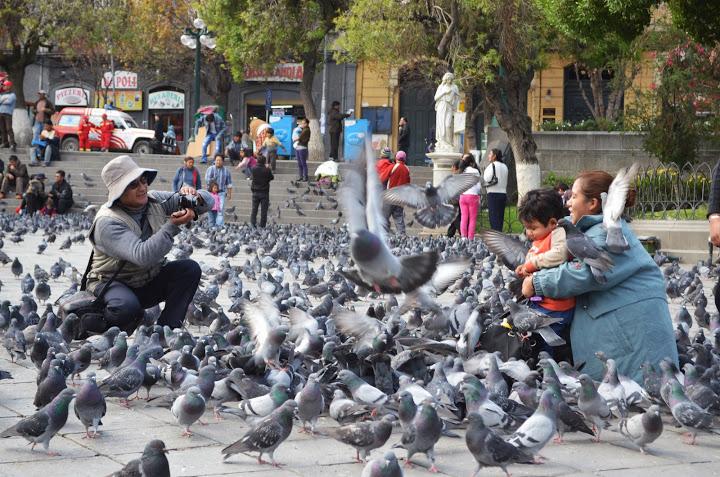 Bolivia - La Paz - Plaza Murillo 3