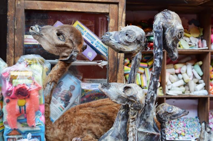 Bolivia - La Paz - Witch's Market