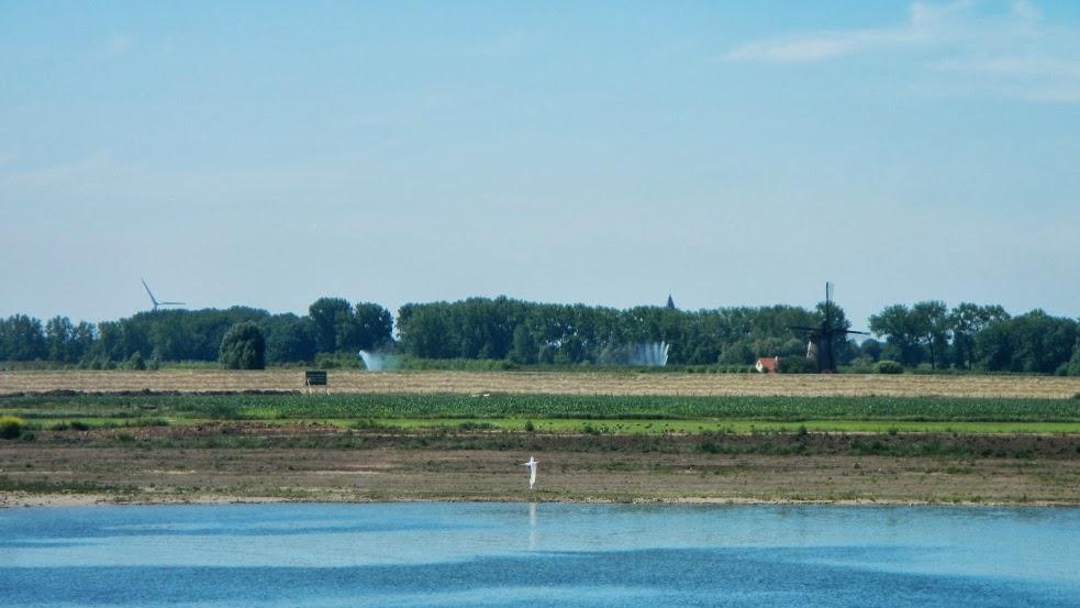 Netherlands - Utrecht to Nijmegen - Farmland