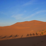 One Night in the Sahara